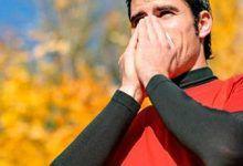 Photo of ¿Qué hay que tomar para curar el resfriado?